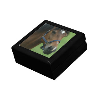 Arabian Horse Pictures Gift Box
