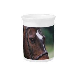 Arabian Horse Pitcher