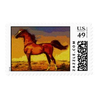 Arabian Horse Postage Stamp