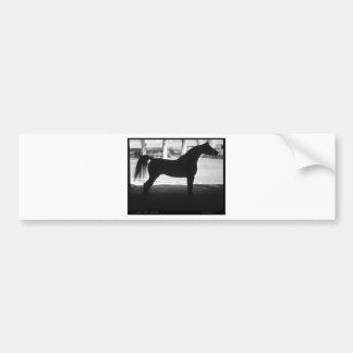 Arabian Horse Silhouette Black and White Bumper Sticker