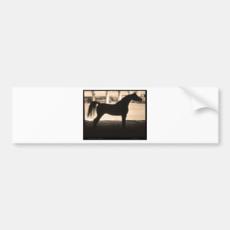 Arabian Horse Silhouette  Sepia Bumper Sticker