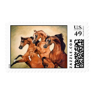 arabian horse stamp