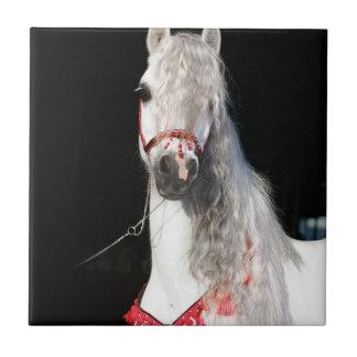 Arabian Horse White Ceramic Tile