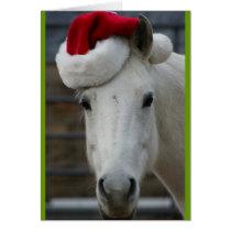 Arabian Horse with Santa Hat Card