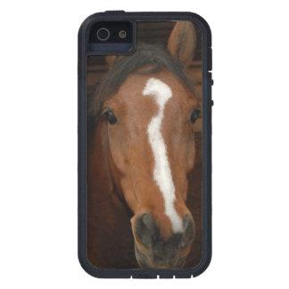 Arabian Horses iPhone SE/5/5s Case