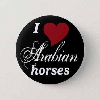Arabian horses pinback button