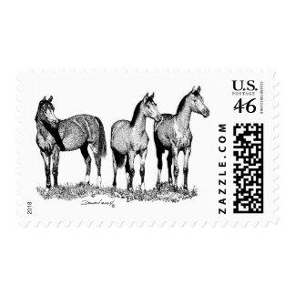Arabian Horses Stamp
