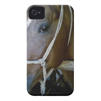 Arabian iPhone 4 Cover