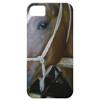 Arabian iPhone SE/5/5s Case