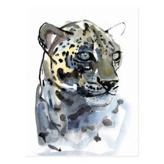 Arabian Leopard 2008  4 Postcard