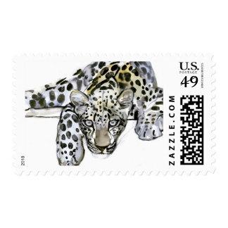 Arabian Leopard 2008  6 Postage