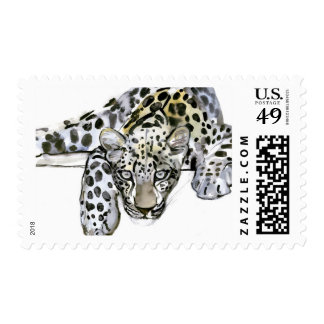 Arabian Leopard 2008  6 Postage Stamps