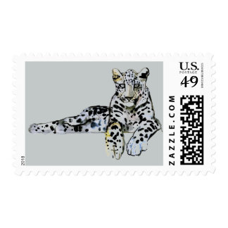 Arabian Leopard 2008  7 Postage Stamps