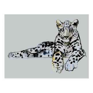 Arabian Leopard 2008  7 Postcard