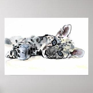 Arabian Leopard Cub 2008 Poster