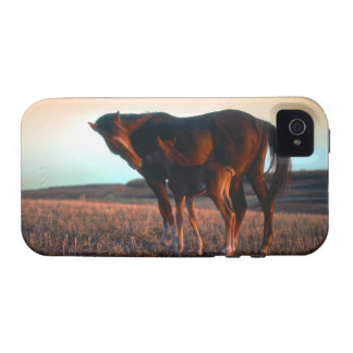 Arabian mare and colt vibe iPhone 4 cases