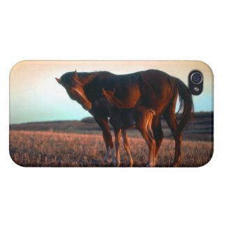 Arabian mare and colt iPhone 4 cover