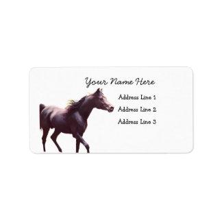 Arabian Stallion Address Labels