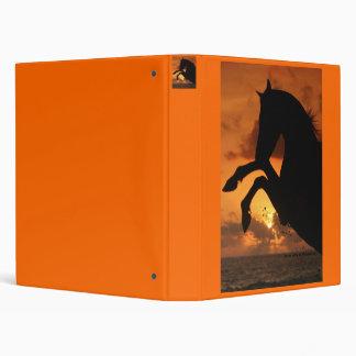 Arabian stallion in the sunset binder
