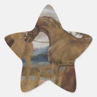 Arabian Stallion led by two Arabians to breed Star Sticker