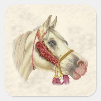 Arabian Stallion Square Sticker