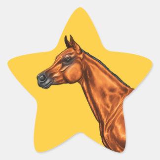 Arabian Star Sticker