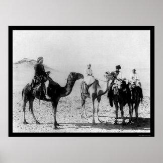 Arabs on Camels in the Sahara Desert 1914 Poster