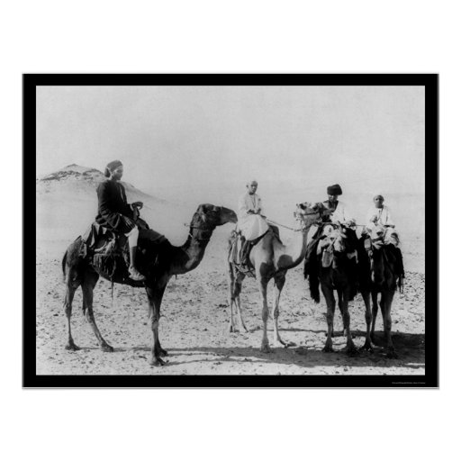 Arabs on Camels in the Sahara Desert 1914 Posters