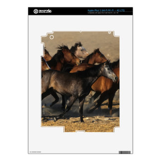 Arabs Running in the Desert Decal For iPad 3