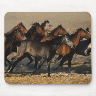 Arabs Running in the Desert Mouse Pad