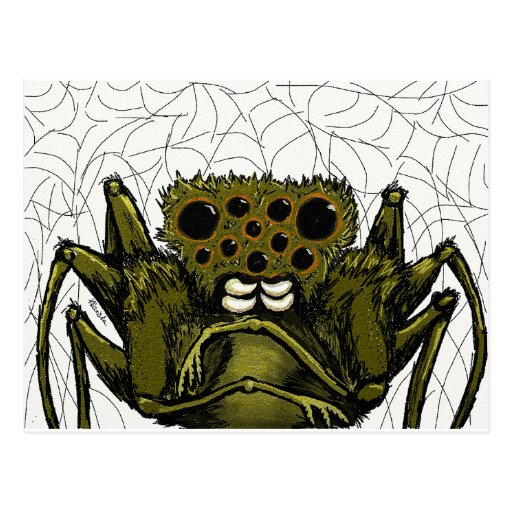 Arachnid Postcard