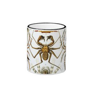 Arácnidos de Ernst Haeckel, arañas del vintage Taza De Dos Colores