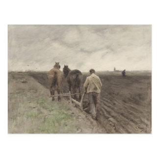 Arado del granjero, color de malva de Antón Postal