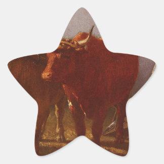 Arado por Troyon constante Pegatina En Forma De Estrella