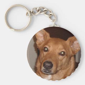 Arag's 'Buddy line' Keychains