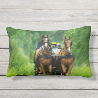 Aramis and Porthos Outdoor Pillow