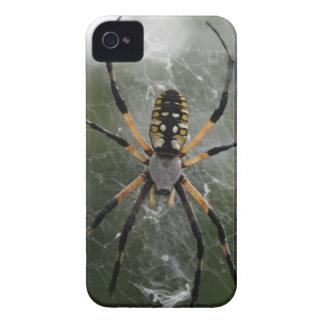 Araña/Argiope enormes del amarillo y del negro Case-Mate iPhone 4 Carcasa