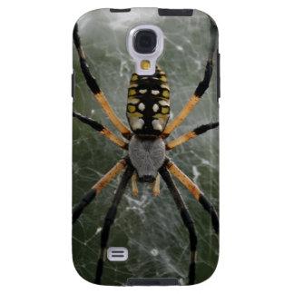 Araña/Argiope enormes del amarillo y del negro