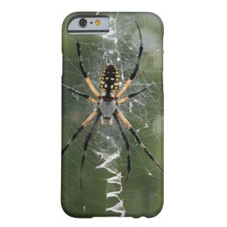 Araña/Argiope enormes del amarillo y del negro Funda De iPhone 6 Barely There