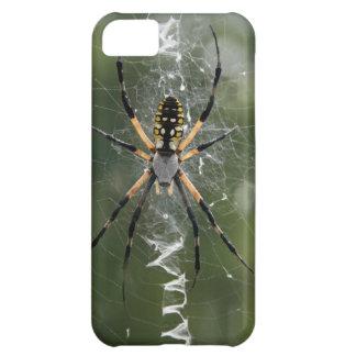 Araña/Argiope enormes del amarillo y del negro Funda Para iPhone 5C