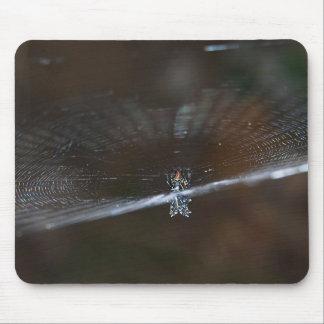 Araña Arrowshaped en mousepad del Web Tapete De Ratones
