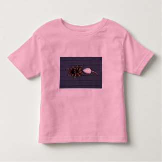 Araña asustadiza del Tarantula y ratón blanco Playeras