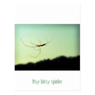 Araña bitsy de Itsy Postal