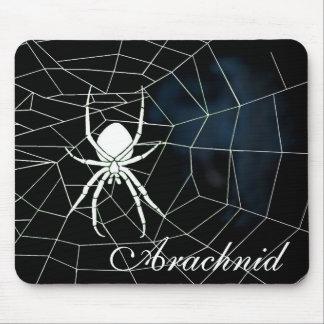 Araña blanca en tela, arácnido alfombrilla de raton