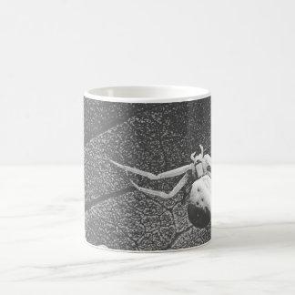 Araña blanco y negro taza mágica