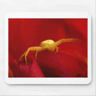Araña candente mouse pad