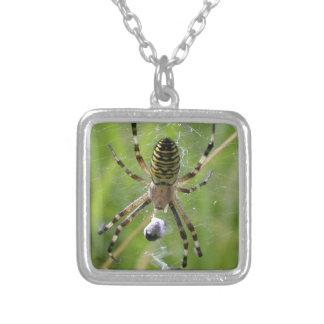 Araña con la presa joyería