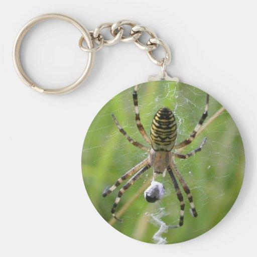 Araña con la presa llaveros