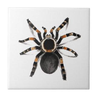 Araña congregada rojo del Tarantula Azulejo Cuadrado Pequeño
