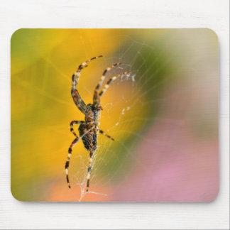 Araña cruzada en su telaraña alfombrilla de ratón